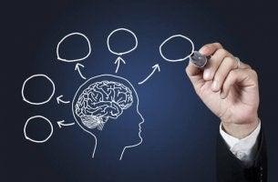Por que estudar psicologia?