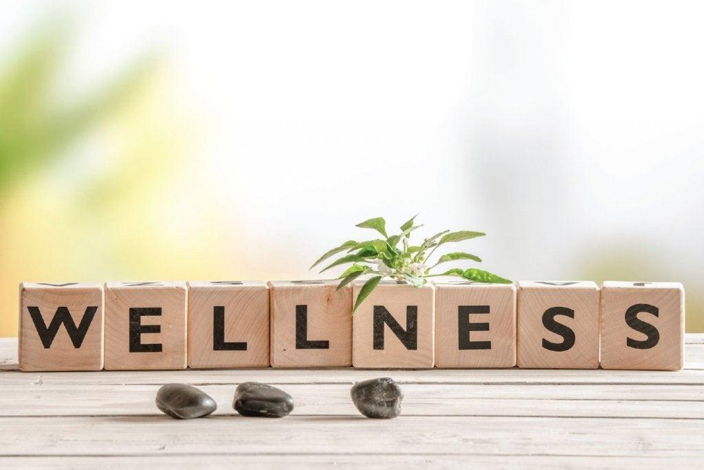 O que é Wellness?