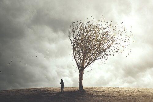 Pessoa observando folhas voando de árvore