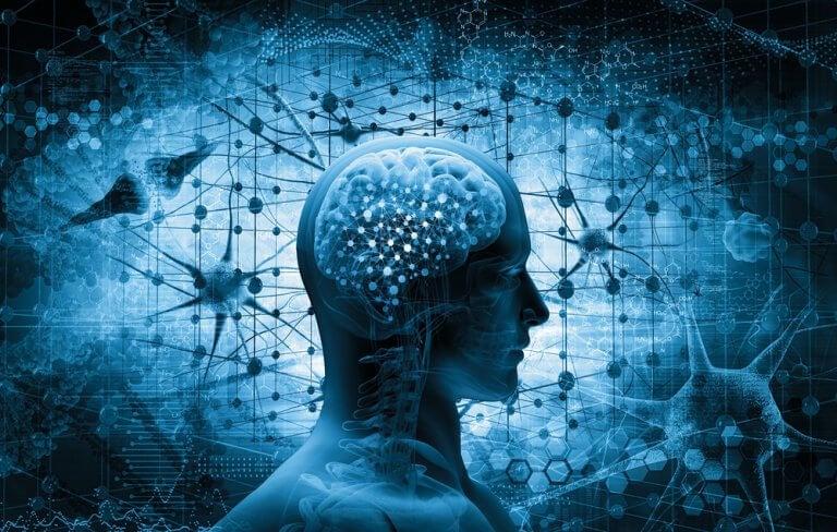 A neurobiologia da resiliência