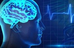 Os maiores inimigos da saúde cerebral
