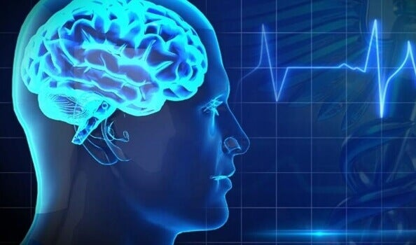 Os 5 maiores inimigos da saúde cerebral