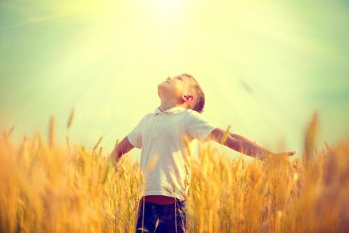 Menino feliz em plantação
