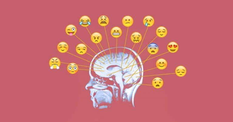 As diferentes emoções sentidas pelo ser humano