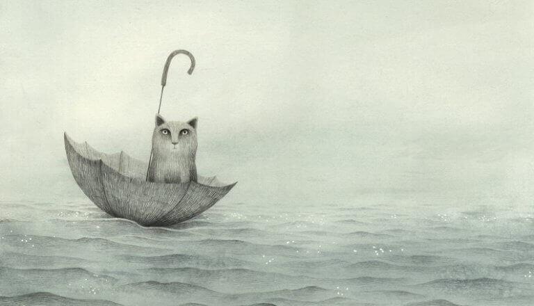 Gato boiando no mar em guarda-chuva