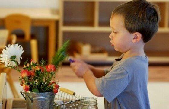 Menino aprendendo com plantas