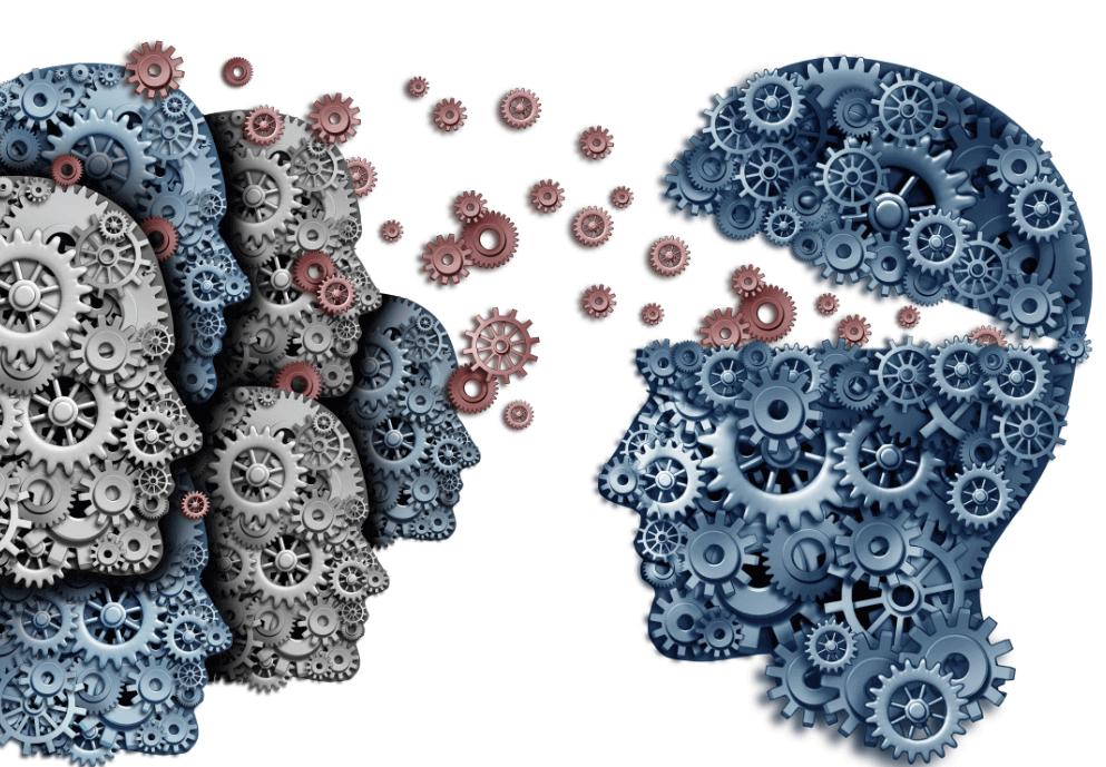 Engrenagens do cérebro humano