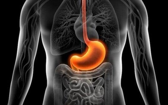Qual é a relação entre estresse e gastrite?