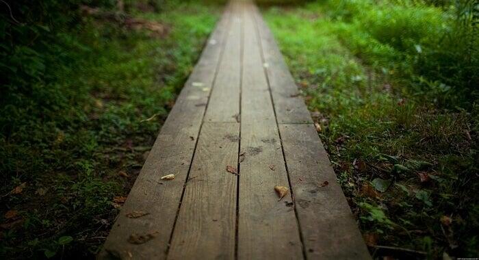 Caminho de tábuas de madeira