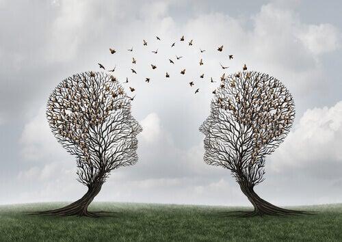 O que é a cognição social?