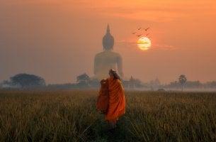Psicologia budista para enfrentar emoções difíceis