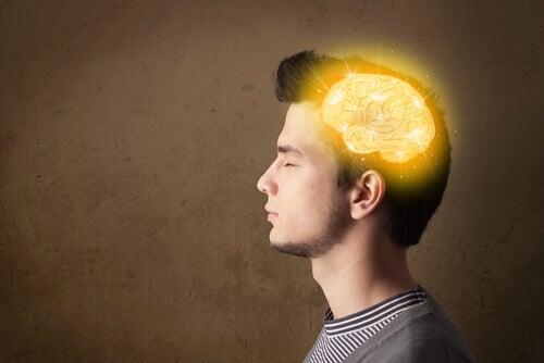 O cérebro dos adolescentes