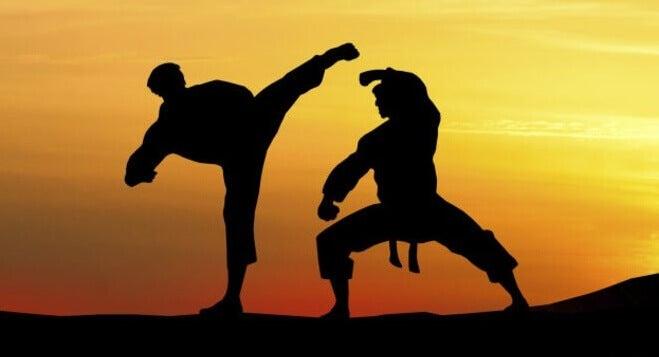 Benefícios das artes marciais