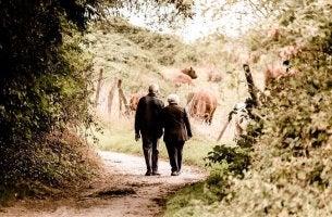 Memória coletiva: as histórias dos nossos avós
