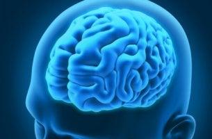 Transtornos neurológicos curiosos e interessantes