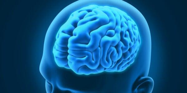 3 transtornos neurológicos curiosos e interessantes