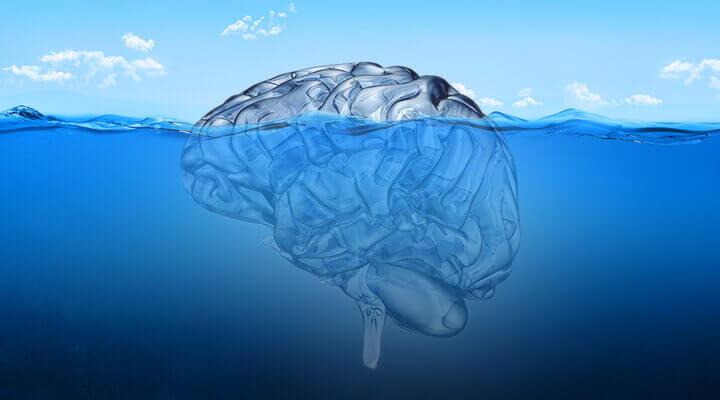 Cérebro boiando na água