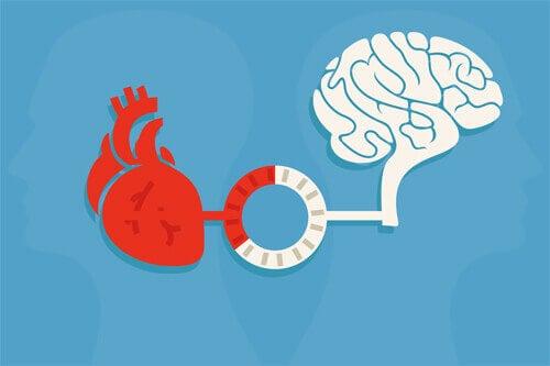 Coração versus razão