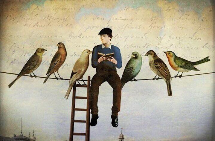 Homem lendo livro ao lado de pássaros