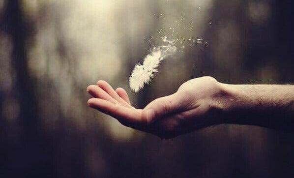 Pluma flutuando sobre mão