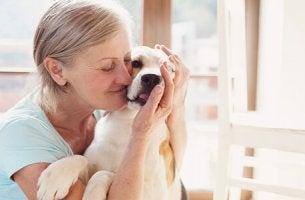 Os benefícios da terapia com cães
