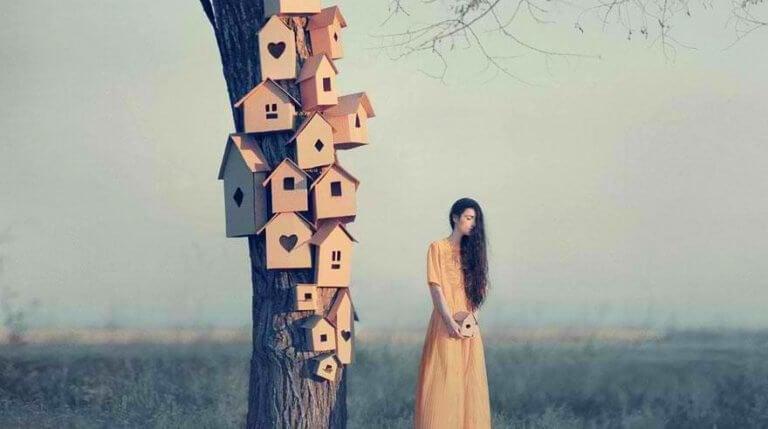 Casas em tronco de árvore