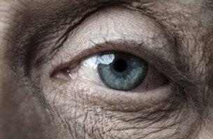 A solidão dos idosos, pessoas estranhas no nosso século