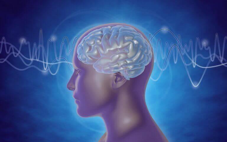 As ondas cerebrais