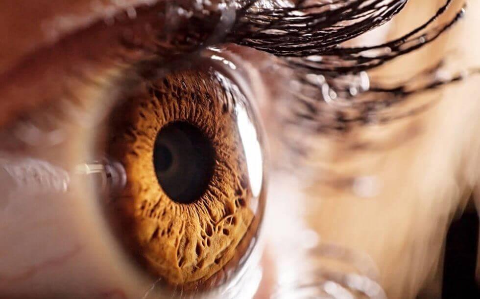 Olho humano visto bem de perto