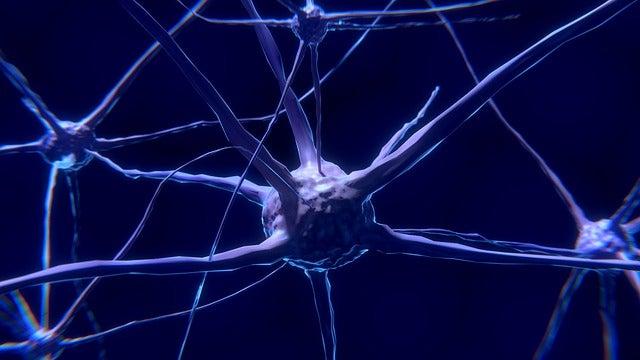 Características dos neurônios e como eles funcionam