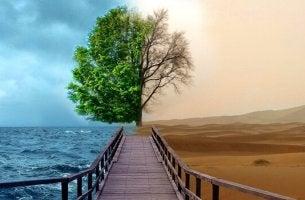 Gestalt-terapia para tratar a depressão