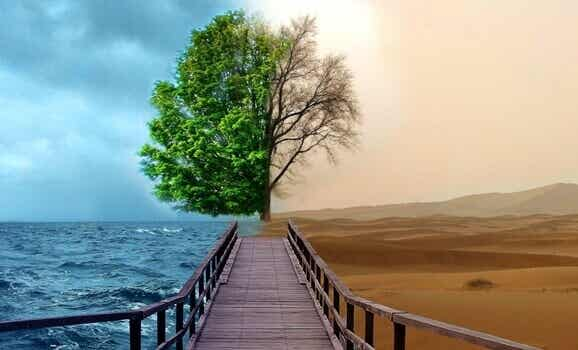 4 chaves da Gestalt-terapia para tratar a depressão