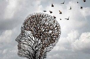 Heurísticas: os interessantes atalhos da nossa mente