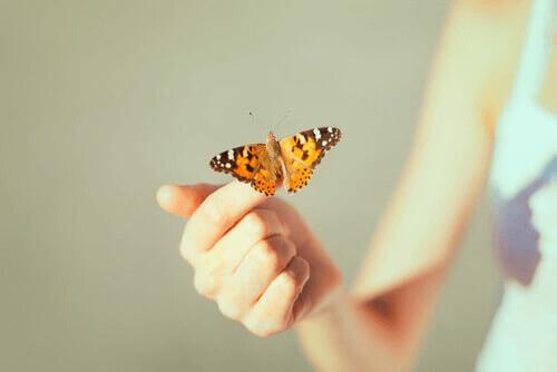 Mão segurando borboleta