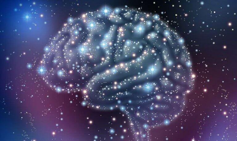Circuito cerebral do prazer