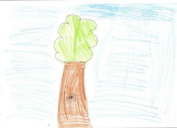 Árvore desenhada por uma criança