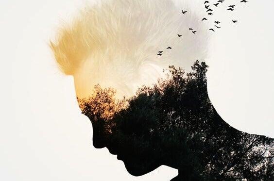 Homem com rosto de árvores