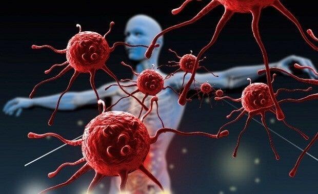 Como fortalecer o sistema imunológico?