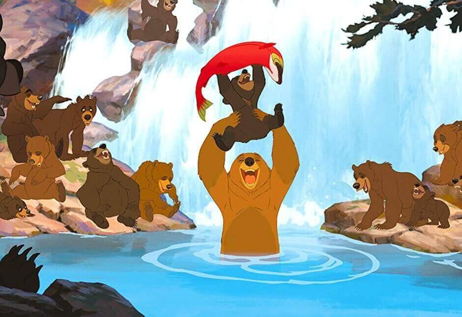 Irmão Urso: uma lição de crescimento pessoal