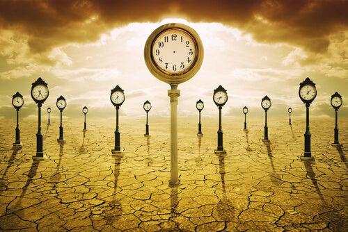 Não perder tempo na vida