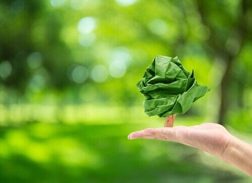 O que é a psicologia ambiental?