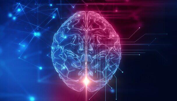 Córtex orbitofrontal: a sede do nosso comportamento
