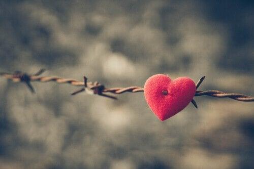 Arame com coração de veludo