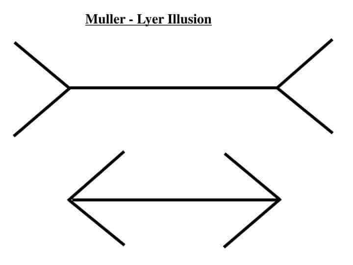 Ilusão Muller