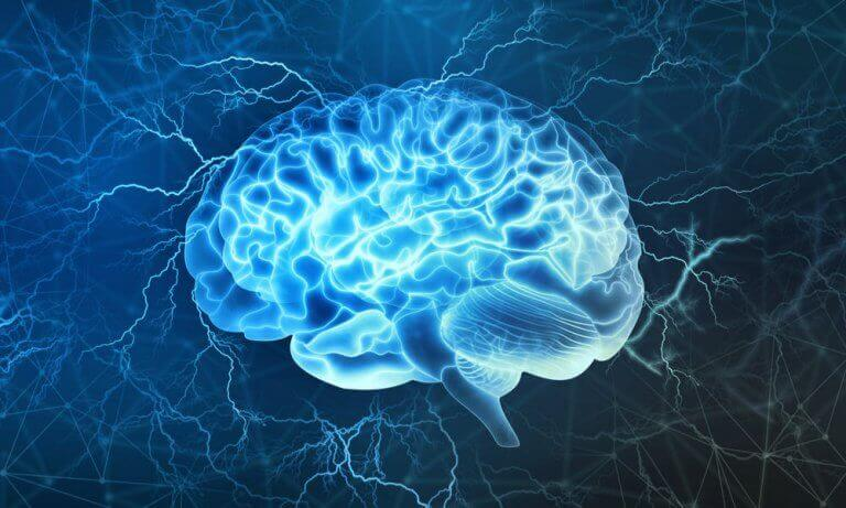 Efeitos da música no cérebro