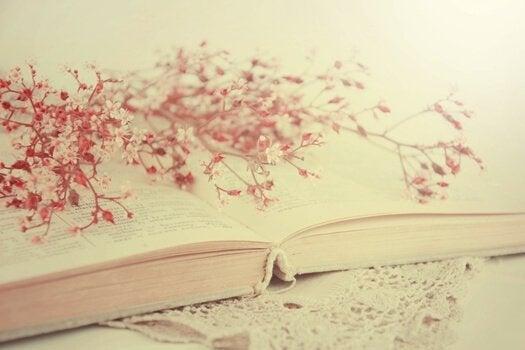 Livro aberto com galhos secos
