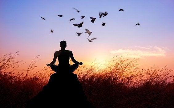 8 caminhos para acabar com o sofrimento, segundo o budismo