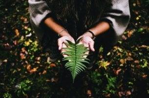 O sentido da vida se escreve com calma e paciência