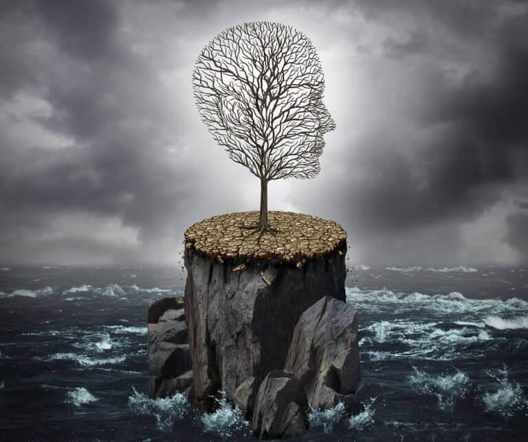 Qual a diferença entre inteligência e sabedoria?