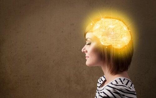 As magias do nosso cérebro